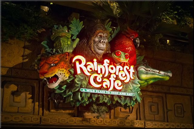 Coupons for rainforest cafe downtown disney