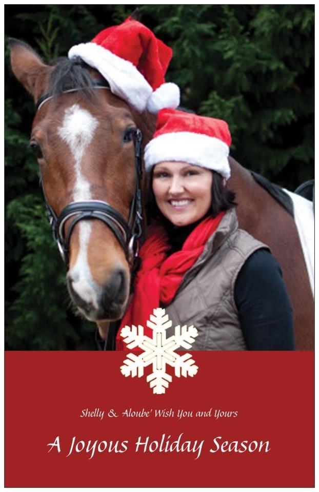 Christmas photography christmas cards and christmas photos