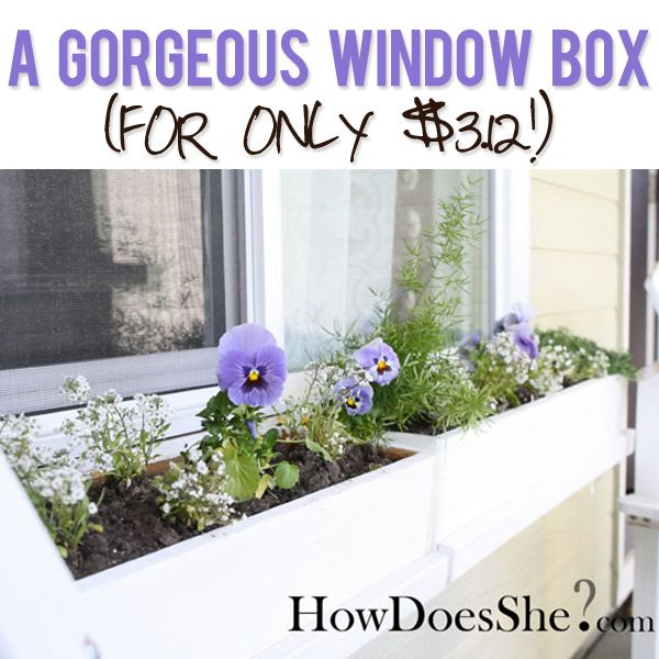 A Gorgeous DIY Window Box for UNDER four bucks! Makes me excited for spring! Full tutorial at howdoesshe.com