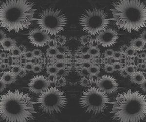 trippy sunflowers