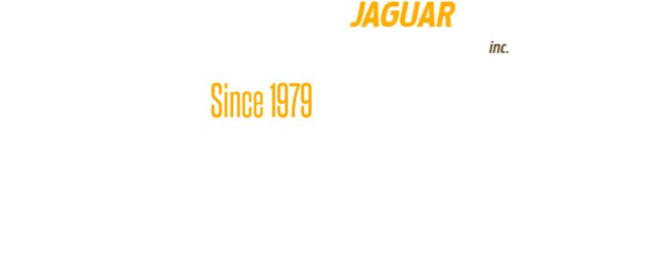 jaguar homepage