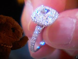 Teddy and Nibs: Ashley Hebert's Engagement Ring