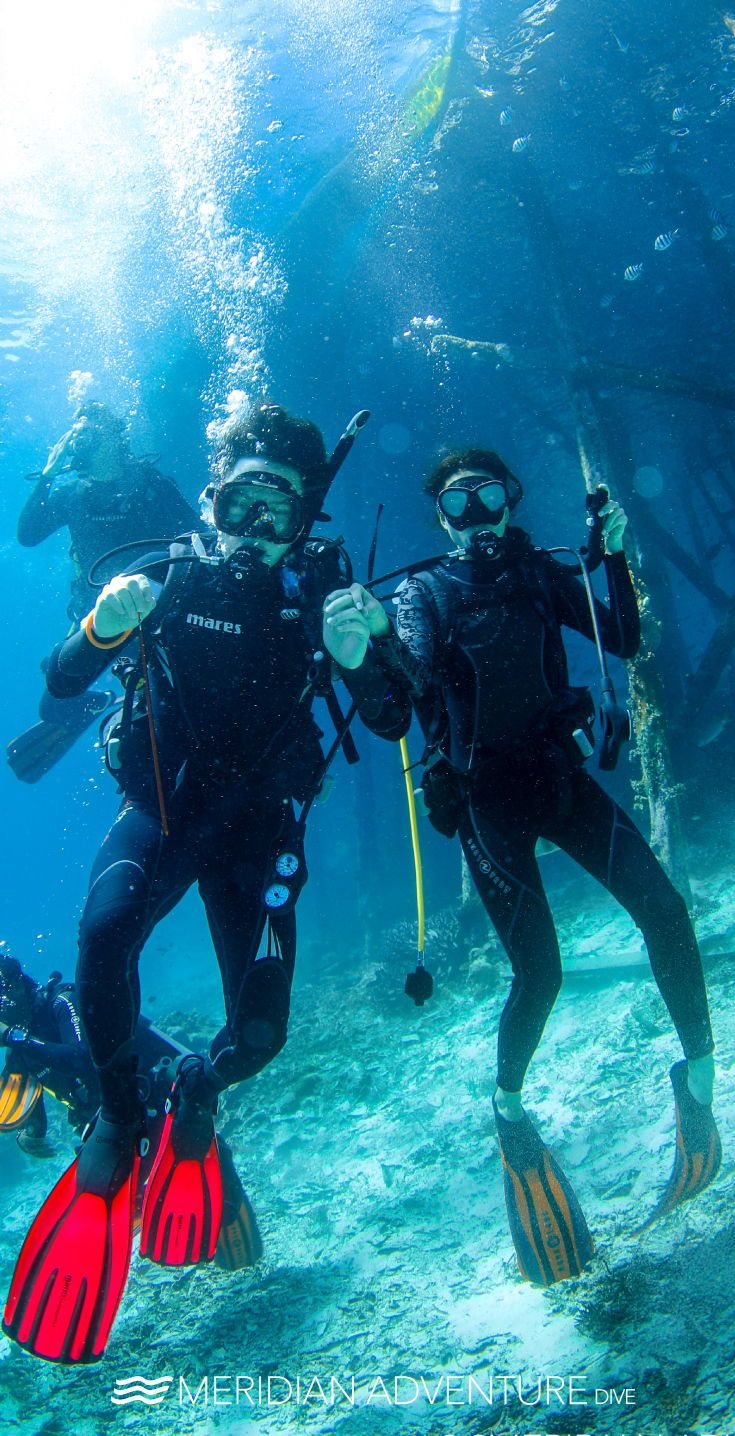 Pin On Scuba Diving