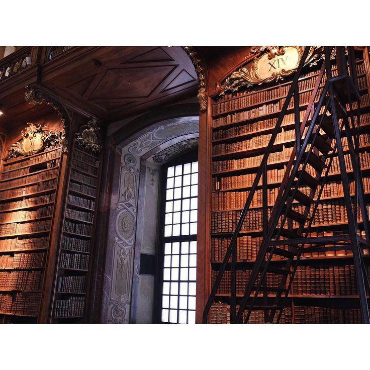 . ハリーポッターの世界みたい✨ . ハリーポッターといえば ファンタスティックビースト 見てきました! 面白かったー .  舞台がロンドンじゃなくて 昔のNYなのも面白かったし 音楽もかわいくて好きだったー☺︎♫ . クイニーみたいなチャーミングさが ほしいな。笑 魅力的… .  #ホーフブルク宮殿 #宮廷図書館 #国立図書館  #オーストリア #ウィーン #ハプスブルク家 #Austria #Wien #Vienna #Hofburg  #Hofburgbibliothek #travel #instagood #vsco #vscocam #FUJIFILM #Xpro1 #