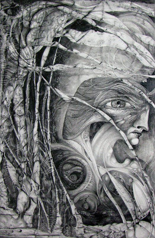 Sheer Wrap - TOPOLOGY OF DECALCOMANIA by VIDA VIDA mJfVw5TqV