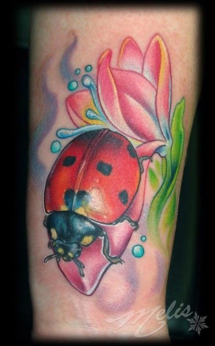 17 best images about tattoo on pinterest lady bug tattoo for Grasshopper tattoo supply