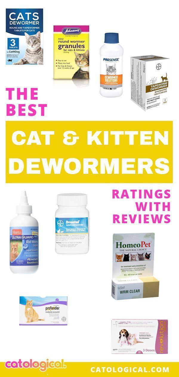 Best Cat Dewormer For Roundworms Tapeworms Otc Prescription