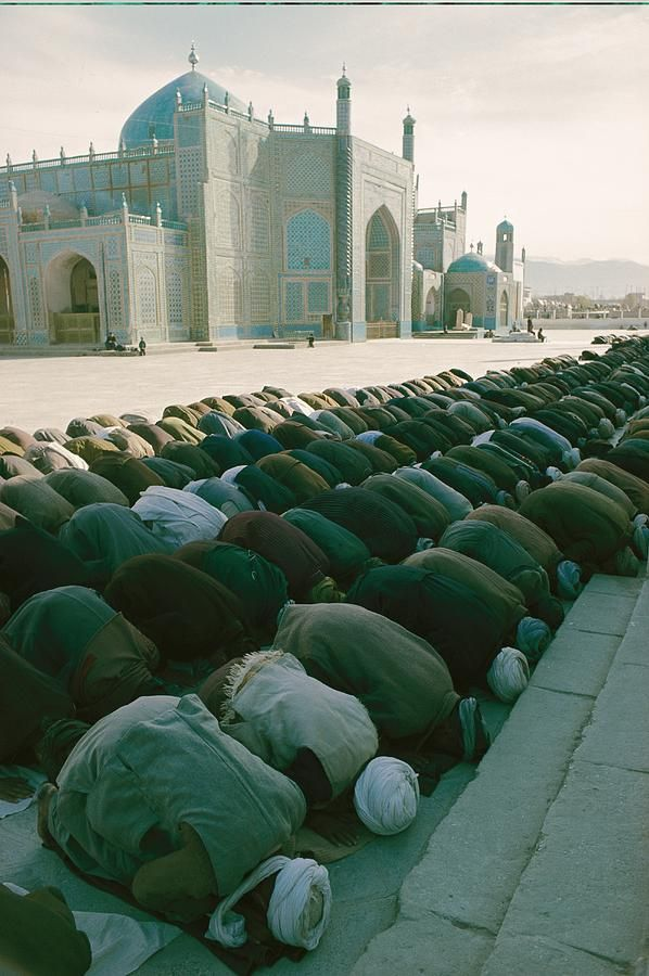 A Muezzin often calls Muslims to worship.    When praying in a Mosque or group, followers line up in rows parallel to the leader of the prayers like in the image above. But, prayer can be preformed individually or with others.