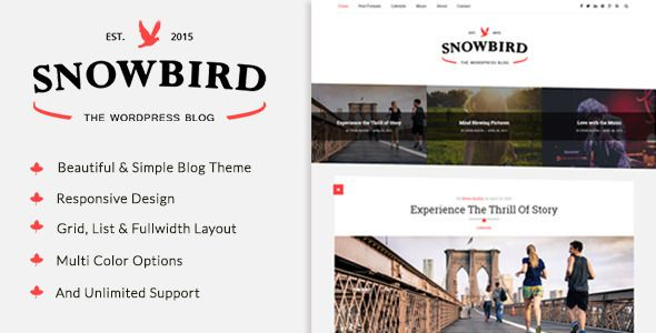 http://themeforest.net/item/snowbird-a-responisve-wordpress-blog-theme/11144612?ref=zozothemes