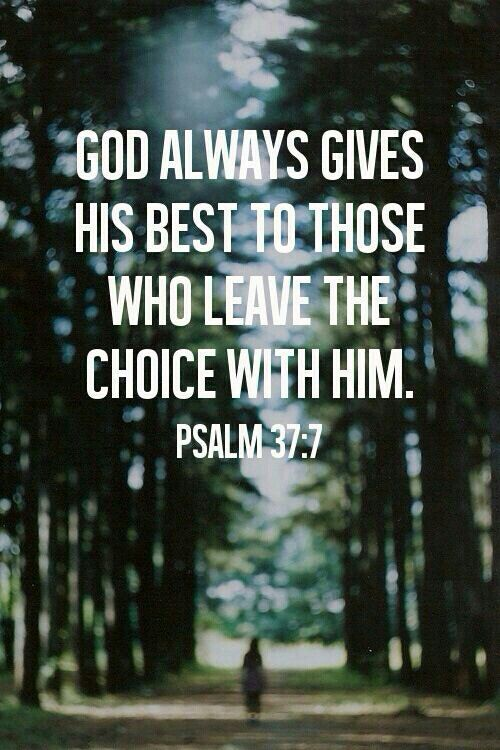 """""""Be still in the presence of the LORD, and wait patiently for him to act. Don't worry about evil people who prosper or fret about their wicked schemes.""""  Psalm 37:7"""