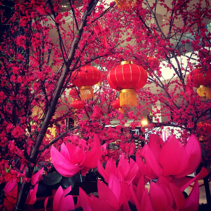 KL/ Chinese New Year/ Year of the Goat/ it's all about the cherry blossoms