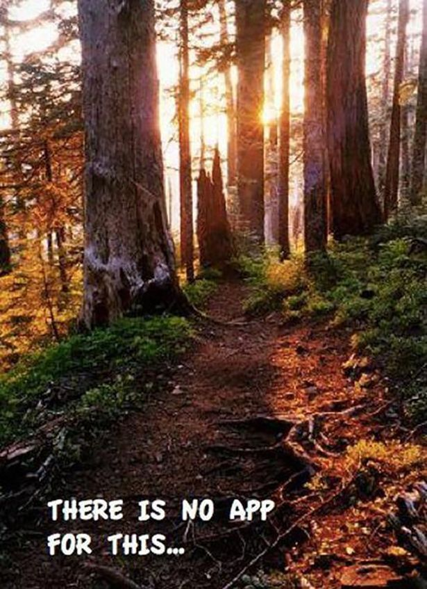 Love, love, love hiking