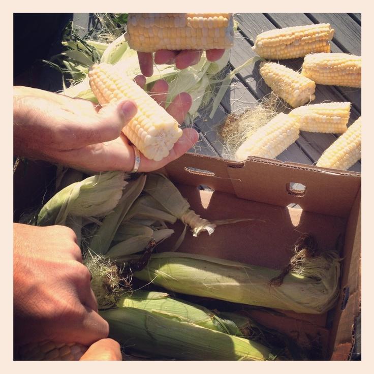 Corn!: Things Food, Foodies Stuff, Favorite Food