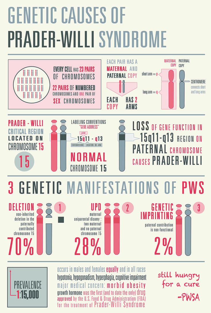 I made this infographic to describe the genetic causes of Prader ...