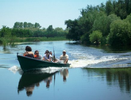 Boat Trips, Danube Delta, Romania at romanianexperience.wordpress.com