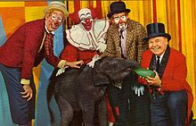 Bozo Circus!  Loved Mr. Ned.  Cookie the Clown came in to replace Oliver ole Oliver the clown.