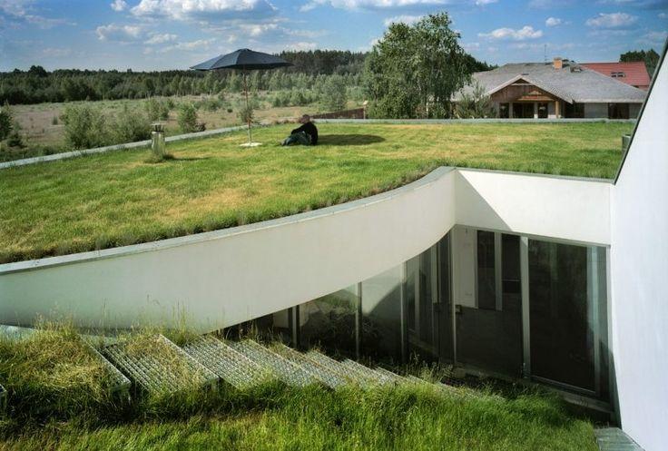Dach mit Dachschräge und Dachbegrünung