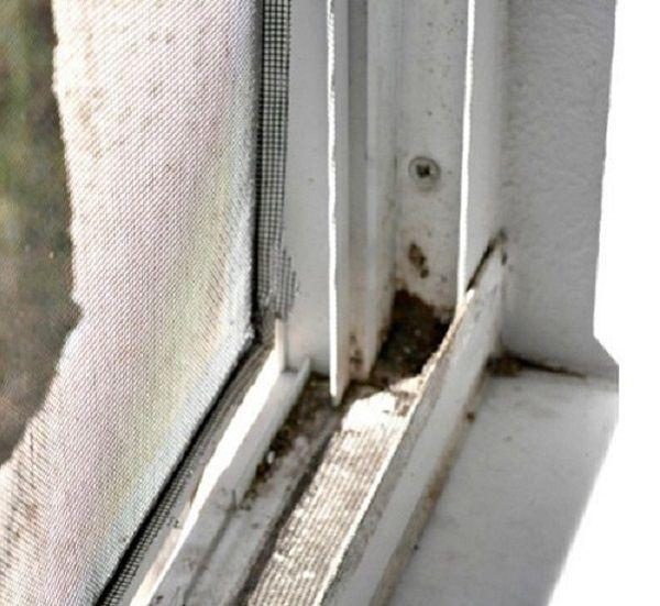Простой трюк поможет легко очистить пластиковые окна