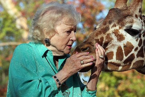 Betty White whispering to a giraffe: Cute Funny Animal, Hipster, Betty White, Weird Pics, Golden Girls, Pink Fashion, Real Woman, Flower, Giraffes