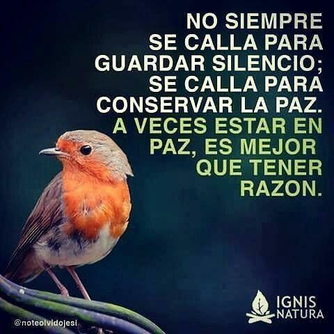 Es mejor estar en paz que tener razón!!!                                                                                                                                                                                 Más