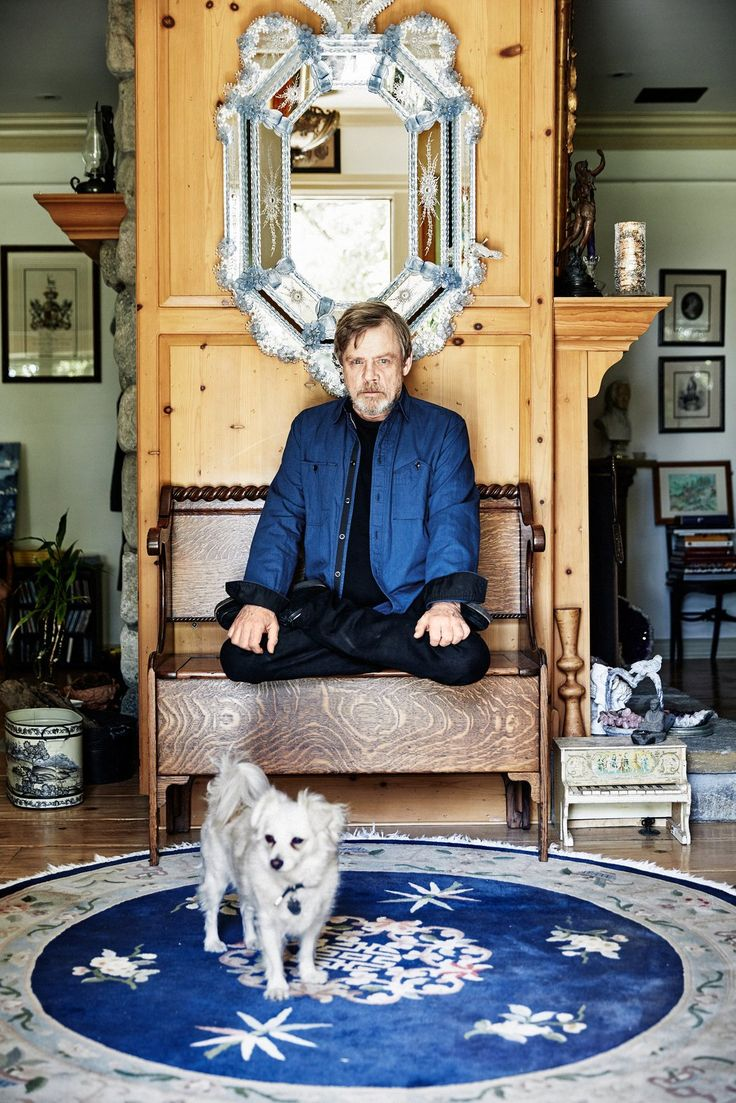 """Mark Hamill has always embraced his """"Star Wars"""" legacy, but when he was invited back for """"The Force Awakens"""" and """"The Last Jedi,"""" he hesitated: """"I was just really scared."""""""