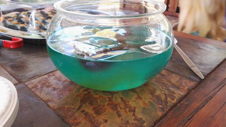 Blue jello with fish!