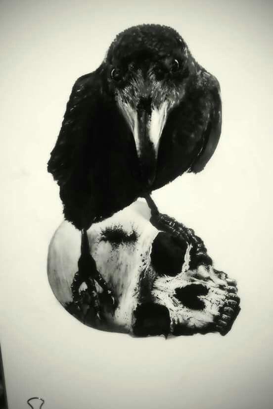 Crow, raven, skull, tattoo,