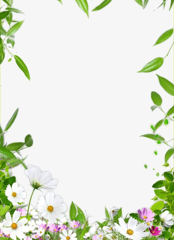 Pin By Johny William On Photo In 2019 Flower Border Png Templates Design