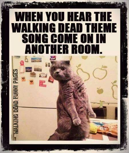 OMG YASSSS I DO THIS WHEN MY MOM WATCHES IT!!! Im like...are u watching Walking Dead without me?
