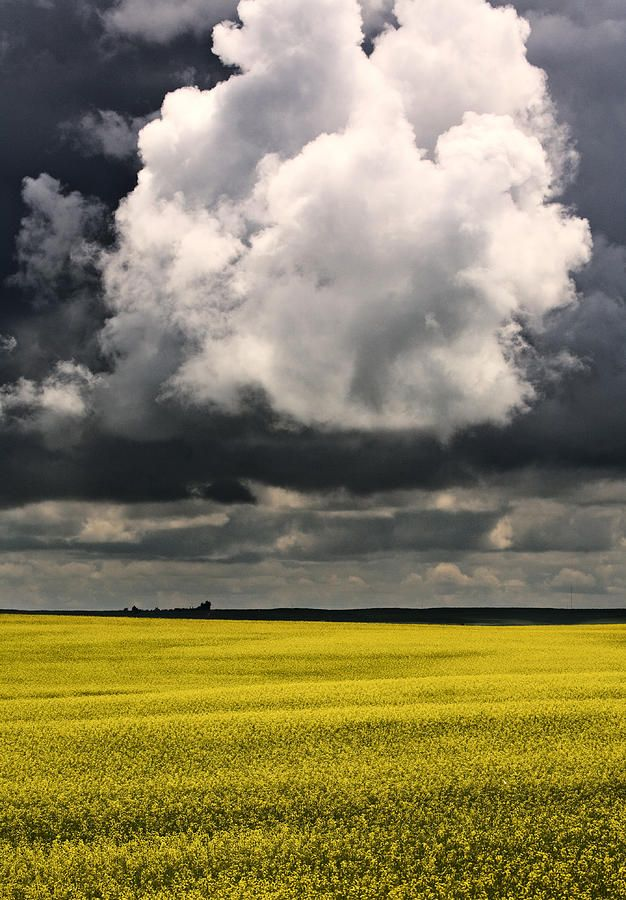 ✯ Storm Clouds - Saskatchewan, Canada\love the top half for a painting