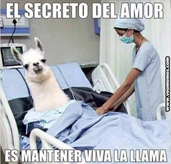 El Secreto del Amor - http://risasocial.es/el-secreto-del-amor/?utm_source=PN&utm_medium=&utm_campaign=ALEGRARME%2Bfrom%2BRisaSocial%2C+Esto+No+Es+Serio -