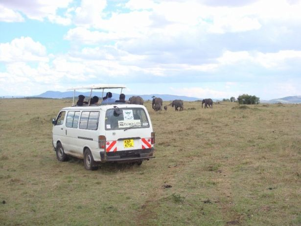 3 nights 4 days masai mara and lake nakuru safari nairobi cbd image 2 safari adventure
