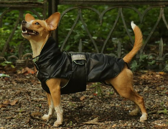 Padded Black reversible raincoat for your dog. by AmiciDiAlia