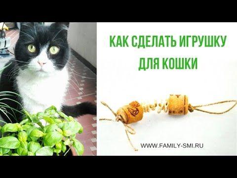 Как сделать игрушку для кошки