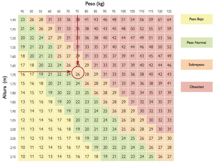 Gracias a unos cálculos matemáticos se puede saber de manera rápida si una persona está o no en el rango adecuado de su peso. Una de las fórmulas más usadas es la del índice de masa corporal (IMC), para evaluar el peso ideal y se divide el peso por la altura al cuadrado. Esto va ...