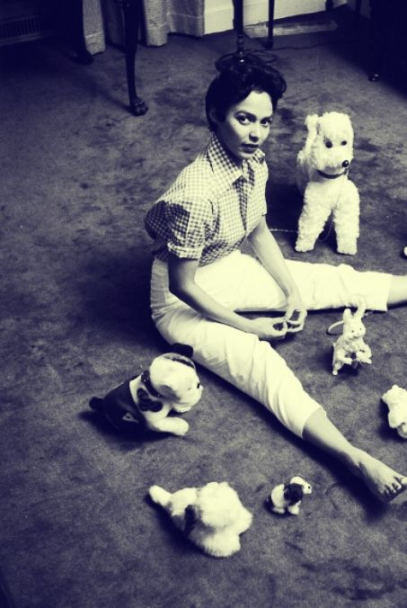 dorothydandridge:    Dorothy Dandridge sitting on the floor with stuffed toy animals. Love this one the most. ^_^