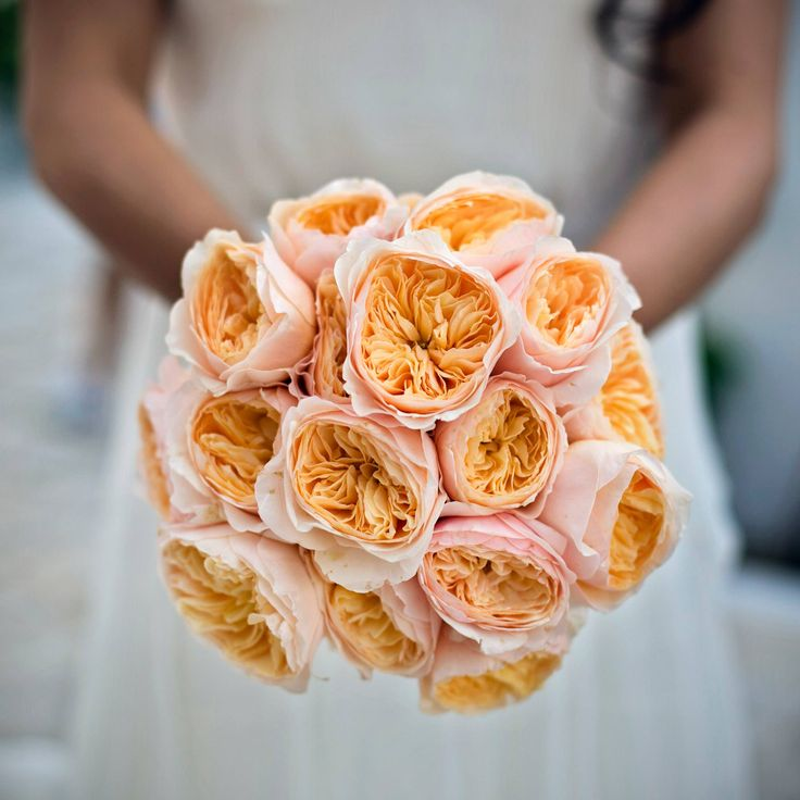 Morlotti Studio - Sweetness of the bride | Bouquet - Orange/Coral bouquet #wedding #bouquet #bride #bridesmaid