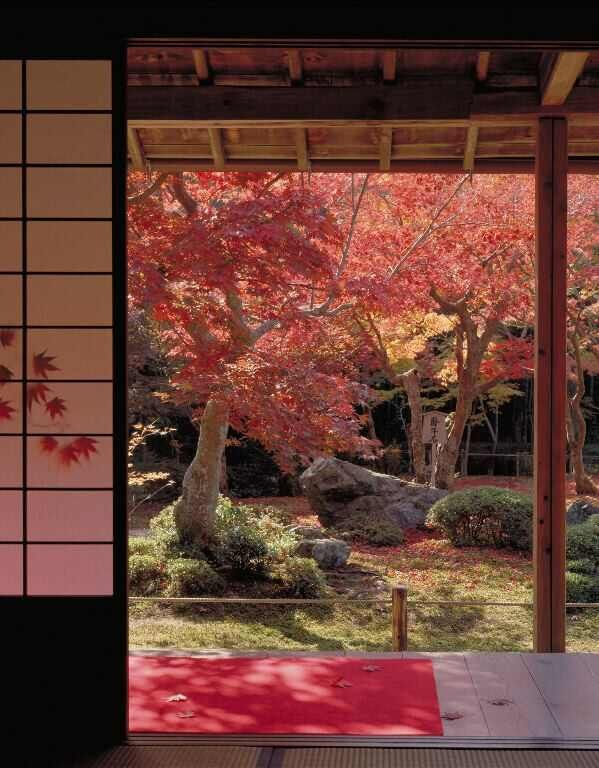 Beautiful Japanese Homes 472 best japanese interiors images on pinterest | japanese style