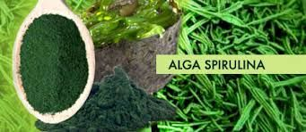 Alga spirulina :proprietà, usi e dove trovarla... http://sapereconsapore.blogspot.it/2015/02/alga-spirulina-proprieta-usi-e-dove.html#links