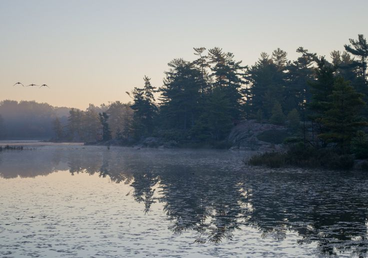 We spent day two of the photography workshop in three different locations: the Killarney Lighthouse Trail, the town of Killarney, and the Cranberry Bog Trail in Killarney Provincial Park. Here are ...