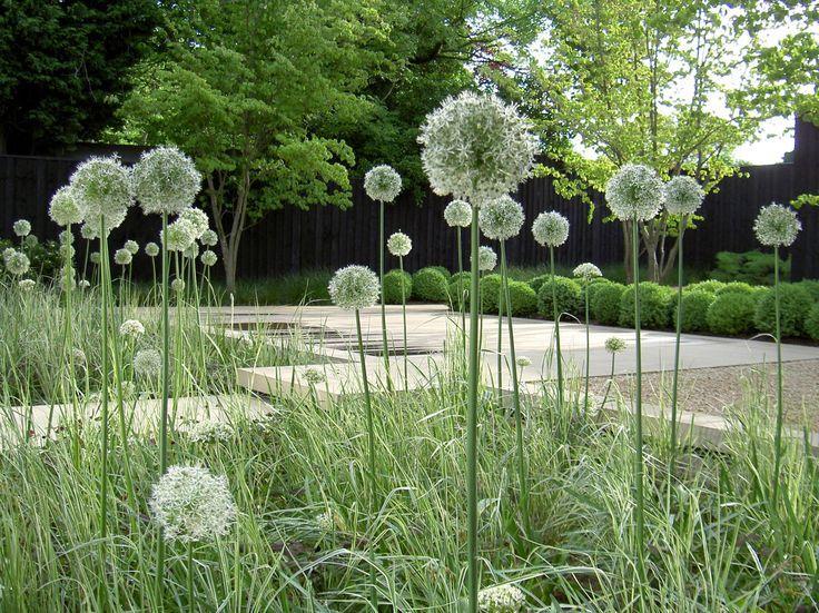 annie pearce / the woodyard, london.