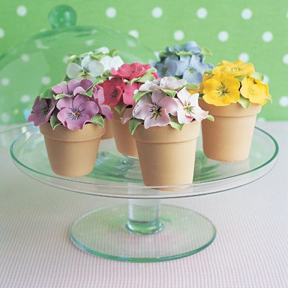 Pansy Pots Cakes