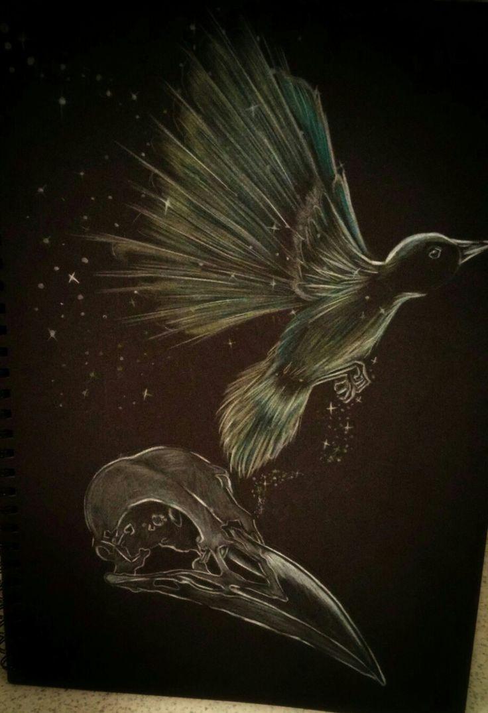Bird sketch. Skull. Art. Pencil drawing
