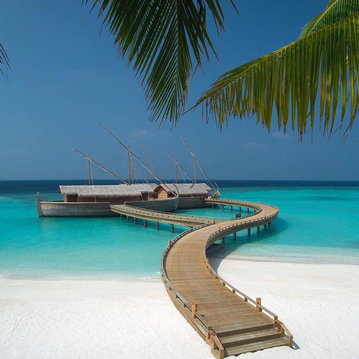 A lovely walk along our beach brings you to this beauty: Ba'theli Restaurant. Anyone feeling hungry yet? . . . . #milaidhoo #maldives #private #luxury #island #resort #slh #dream #instahappy #pool #sun #happy #wanderlust #bucketlist #holidaygoals #ocean #blue #luxurytravel #instatravel #jetset #visitmaldives #smallluxuryhotels #potd #foodie #foodlover #restaurant #dining #eatout #eatlocal