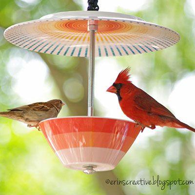 Melamine plate + bowl = irresistible bird feeder