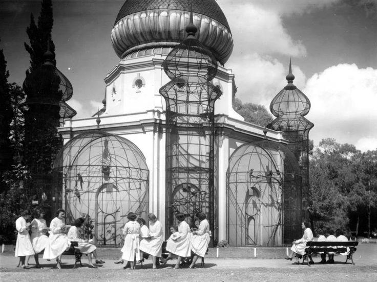 Buenos Aires. Jardín Zoológico, grupo de estudiantes tomando apuntes frente a la jaula de los loros.