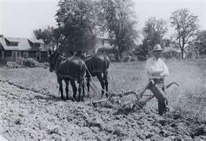 EARLY 1900's: Google Image, Horse Working, Farm Life, Early 1900 S, Farm Days, Southern Farming Living