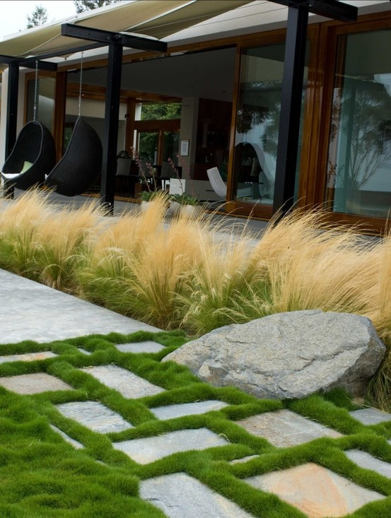 grounded modern landscape architecture contemporary exterior san diego by grounded richard risner rla asla