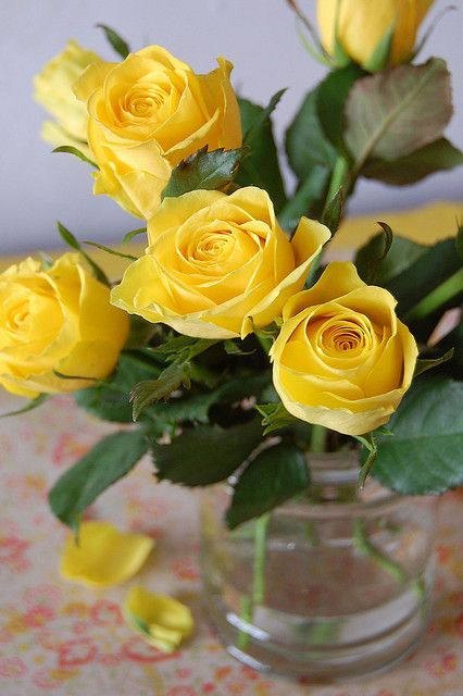 I need more yellow in my life * photo by little-stories @flickr #yellow #roses