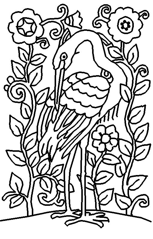 Heron Free Printable Adult Coloring Pages Bird Flowers